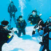 Perfect your buoyancy skills with the Diamond Reef Course at Scuba Center in Eagan, Minnesota