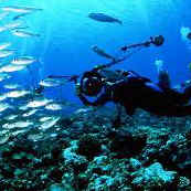 PADI Specialty Course Instructor information | http://www.padi.com