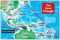 The Coral Triangle | Philippines Group Dive Trip with Scuba Center